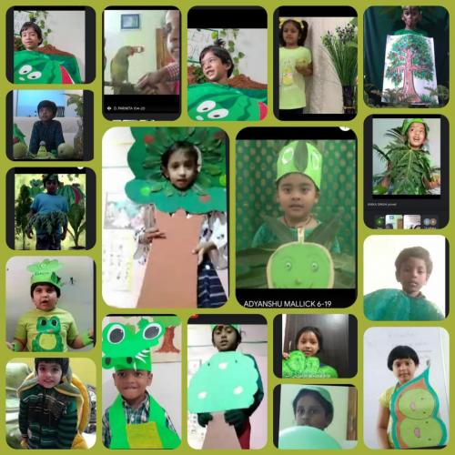 'Green Day' - A Special Activity